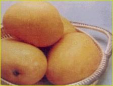 http://atrsolar.com/mango.jpg